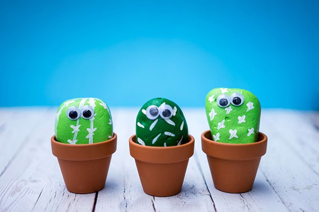 Craft a cactus with rockand paint it
